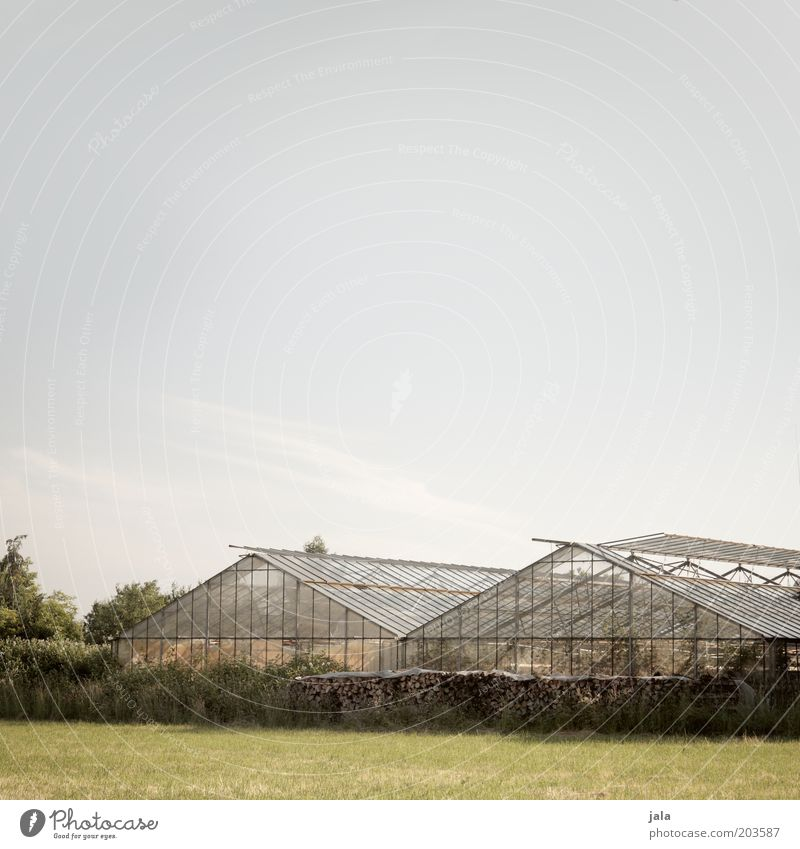 gärtnerei Himmel Baum Arbeit & Erwerbstätigkeit Wiese Holz Gebäude Feld Umwelt Sträucher Unternehmen Arbeitsplatz Gewächshaus Gärtnerei