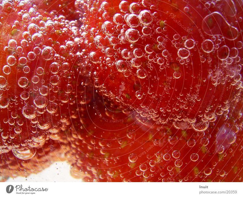 Erdbeeren 03 Sekt Prosecco Sektperlen Alkohol Nahaufnahme
