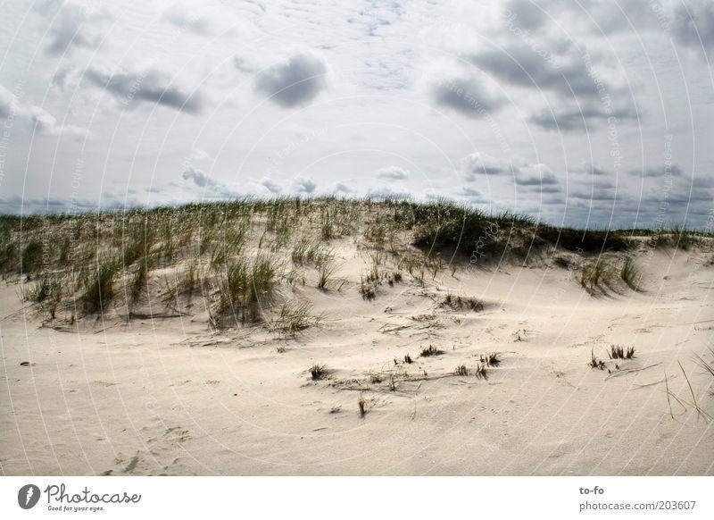 Düne Natur Landschaft Sand Luft Himmel Wolken Pflanze Gras Küste Strand Nordsee Stimmung ruhig Farbfoto Außenaufnahme Menschenleer Tag