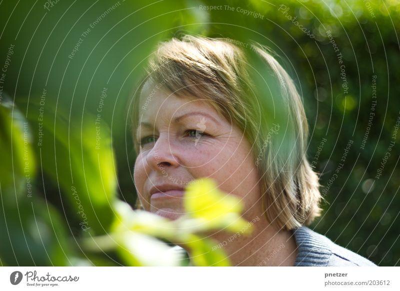 Wo ist der Apfel? Mensch Frau Natur Baum Sommer Blatt Gesicht Erwachsene Kopf Haare & Frisuren Garten Frühling blond Klima Schönes Wetter 30-45 Jahre