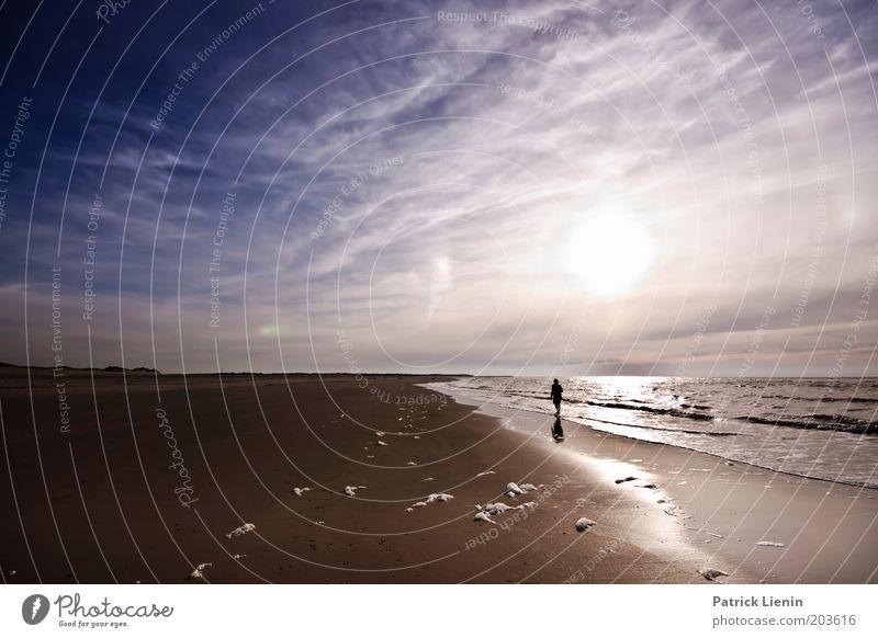 Grenzenlos Umwelt Natur Landschaft Urelemente Erde Sand Luft Wasser Himmel Wolken Sonnenaufgang Sonnenuntergang Sommer Schönes Wetter Wind Wellen Küste Strand