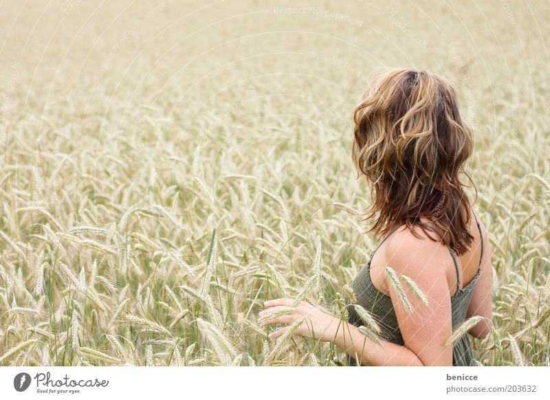 kornfeld Frau Mensch Kornfeld stehen Einsamkeit Weizen Feld verträumt Natur berühren Leben dünn Textfreiraum links Landwirtschaft Getreide Rückansicht Sommer