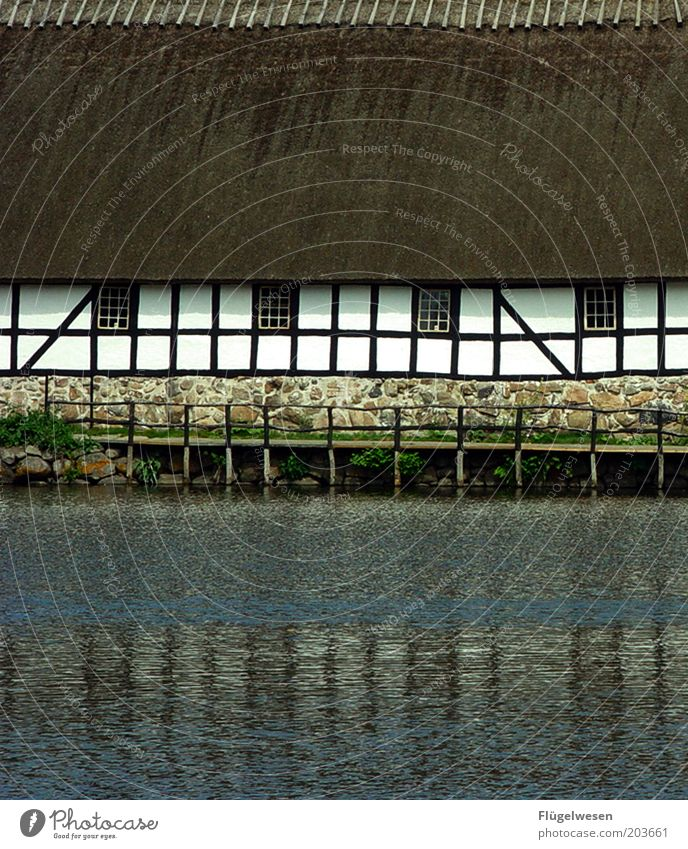Das Haus am See Sommer Moor Sumpf Teich Fluss Wasser Schutz Freizeit & Hobby Steg Schilfrohr Fachwerkfassade Fachwerkhaus Anlegestelle Dänemark früher Bauernhof