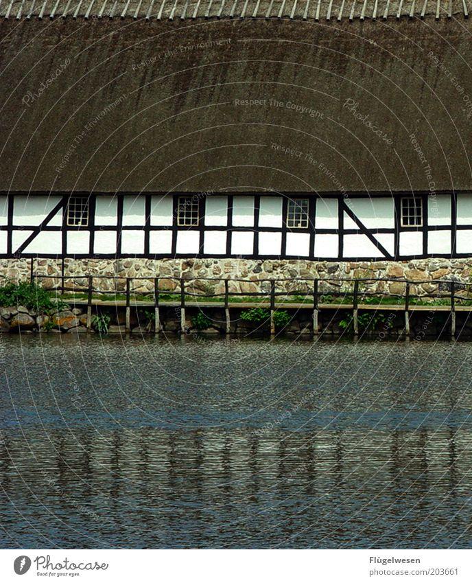 Das Haus am See Wasser Sommer Fluss Dach Freizeit & Hobby Schutz Bauernhof Idylle Schilfrohr Steg historisch Anlegestelle Teich früher Fassade