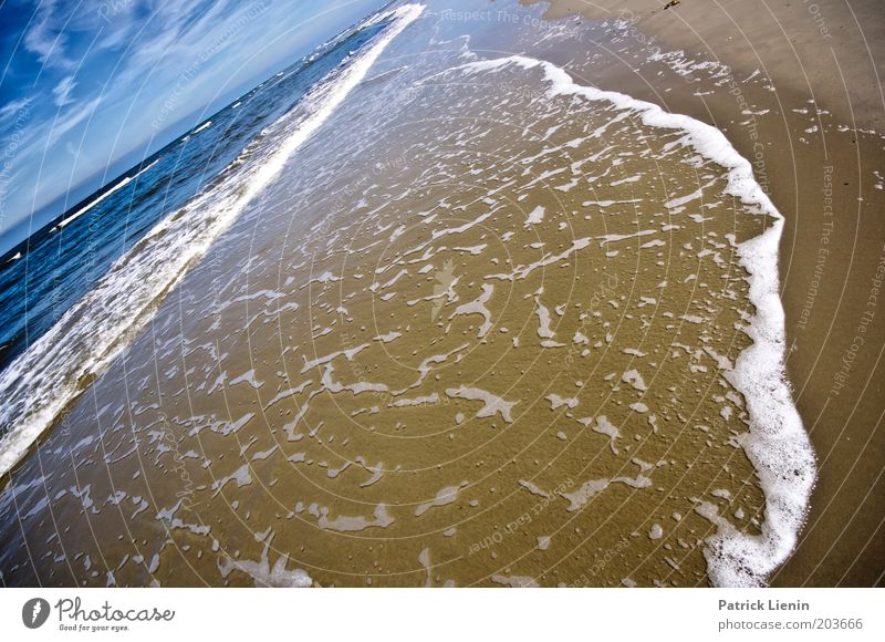 Hörst Du das Meer rauschen? Umwelt Natur Landschaft Wolken Sommer Klima Wetter Schönes Wetter Wind Wellen Küste Strand Nordsee Schaum Ferien & Urlaub & Reisen