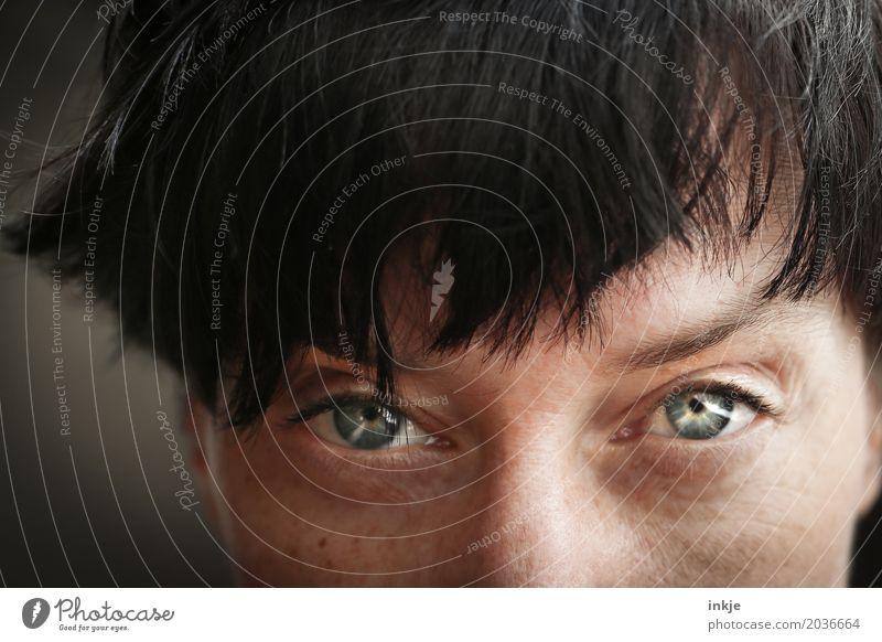 Pony Frau Erwachsene Leben Gesicht Auge 1 Mensch 30-45 Jahre 45-60 Jahre Haare & Frisuren schwarzhaarig kurzhaarig glänzend Blick Gefühle Stimmung selbstbewußt