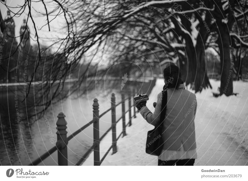 [ 100 ] The Exeption Mensch Natur Wasser Stadt schön Baum kalt Schnee Umwelt Gefühle Bewegung Stimmung Park hell außergewöhnlich Fluss