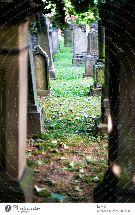 Grabsteinflucht Natur alt Sommer ruhig Gras Wärme braun Religion & Glaube Umwelt Schilder & Markierungen Moos Schönes Wetter Friedhof eckig verwittert