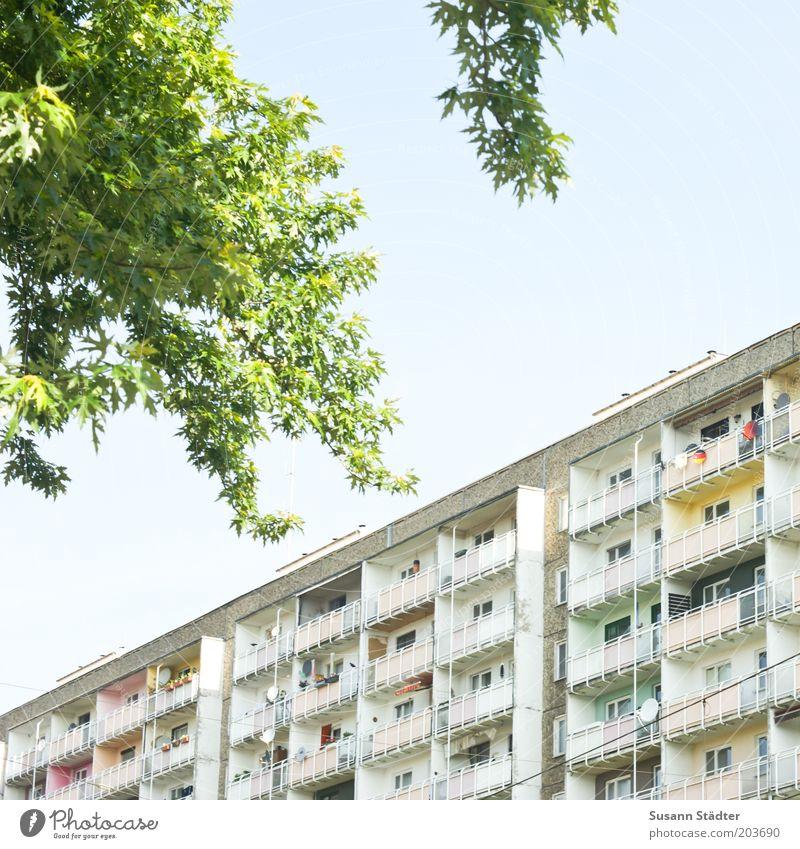 alter Neubau Baum Stadt überbevölkert Haus Hochhaus Fassade Balkon Fenster Häusliches Leben Plattenbau Satellitenantenne mehrfarbig einzigartig viele Ghetto