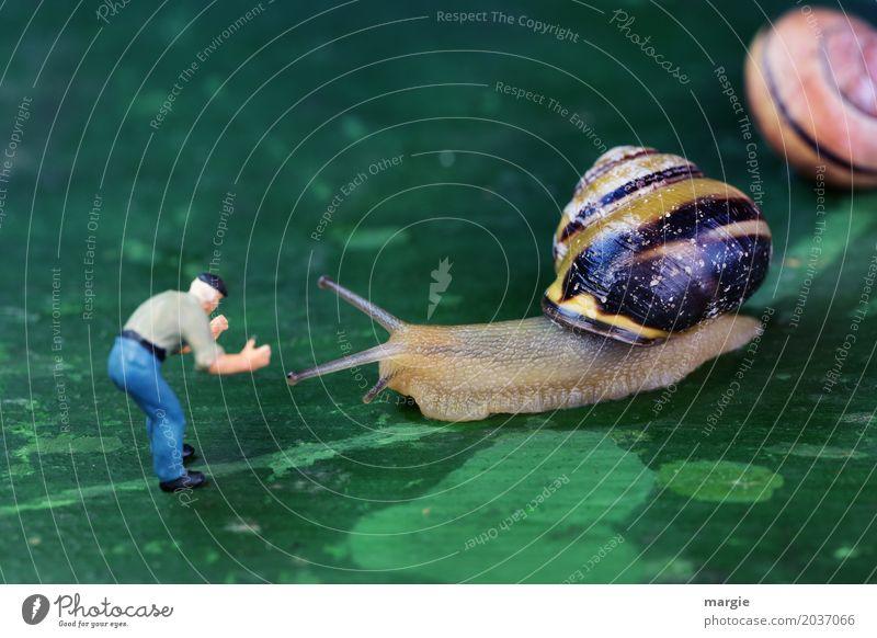 Dank Photocase das hier: Miniaturfigur mit Schnecken Mensch maskulin Mann Erwachsene 1 Tier Wildtier Tiergesicht 2 grün Querformat Spirale Schneckenhaus