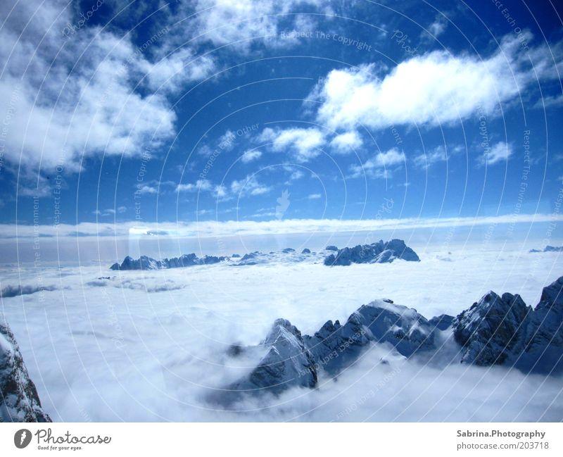 Über den Wolken Himmel Natur blau Ferien & Urlaub & Reisen Wolken Winter Schnee Berge u. Gebirge Landschaft Stimmung Nebel Macht Alpen Gipfel Schönes Wetter Luftaufnahme