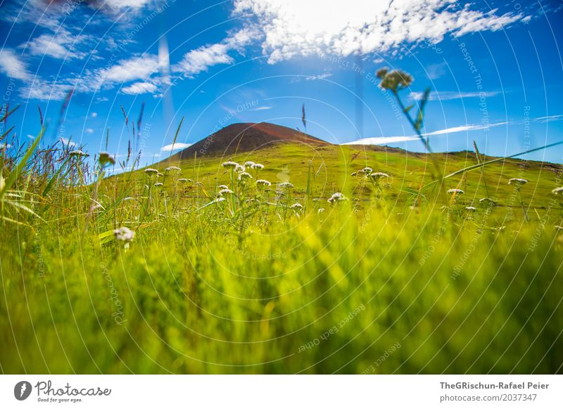 Vulkan Umwelt Natur Landschaft blau grün Gras Heimaey Island Vulkaninsel Himmel Perspektive traumhaft Schönes Wetter Stein Hügel Weide Farbfoto