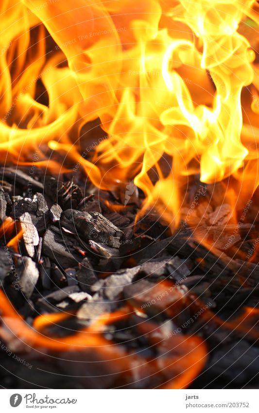 hot heiß Feuer Grill Grillkohle Grillsaison Flamme Farbfoto Nahaufnahme Menschenleer Schwache Tiefenschärfe Außenaufnahme