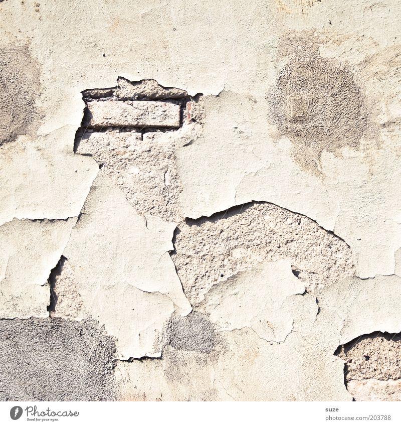 Einstein alt Wand Mauer dreckig Fassade kaputt authentisch Vergänglichkeit verfallen Verfall Vergangenheit Renovieren Putz Demontage stagnierend Sanieren