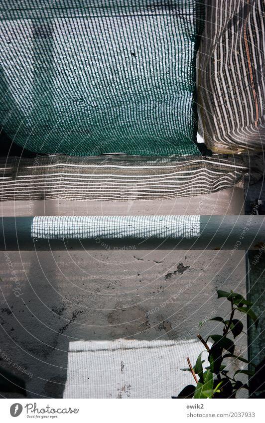 Treibhaus Arbeitsplatz Gärtner Gewächshaus Pflanze Heizungsrohr Rohrleitung Gerüstnetz Sicherheitsnetz Baustellennetz rau durchsichtig Lichteinfall Stein