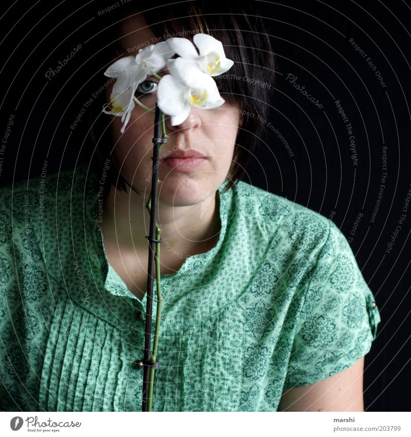 der Blümchenblick Frau Mensch Jugendliche weiß Blume grün Pflanze Gesicht Auge dunkel feminin Blüte Erwachsene beobachten Blühend exotisch