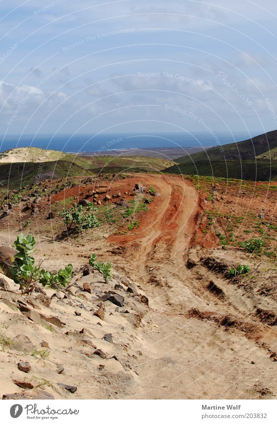 der Weg reloaded Ferien & Urlaub & Reisen Ausflug Ferne Freiheit Natur Landschaft Sand Cabo Verde São Vicente Afrika frei Fußweg Reifenspuren Meer Horizont