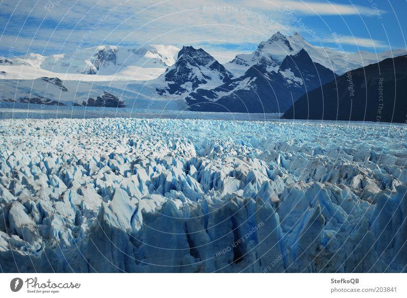 Perito Moreno Natur Wasser weiß blau Ferien & Urlaub & Reisen Freiheit Landschaft Umwelt Eis frei Frost Urelemente Unendlichkeit Reisefotografie leuchten gefroren