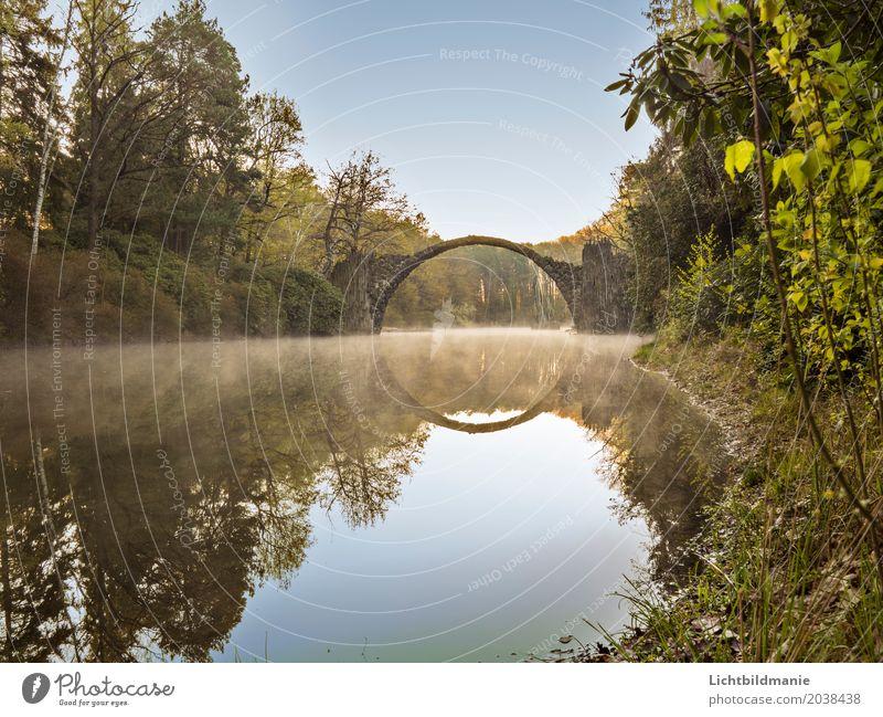 Rakotzbrücke 2 Ausflug Sightseeing Kunst Kunstwerk Architektur Kultur Natur Landschaft Frühling Nebel Park Seeufer Moor Sumpf Teich Rhododendron