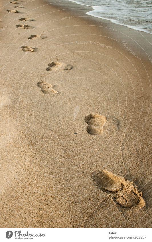 Spuren im Sand Natur Meer Strand Einsamkeit Erholung Landschaft Küste Wege & Pfade Freiheit Sand Zeit Gesundheit gehen Zukunft Suche Spaziergang