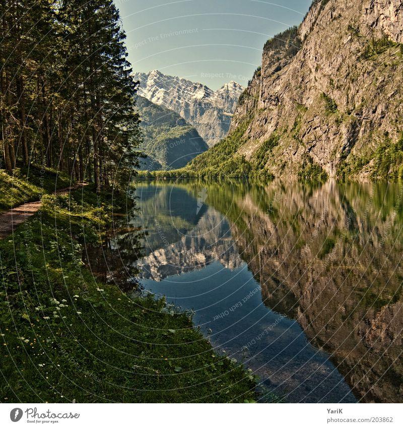 In de Berch Ferne Freiheit Sommer Berge u. Gebirge ästhetisch einzigartig See Seeufer Fußweg Wege & Pfade Gras Baum Wald Wasser Aussicht Schneebedeckte Gipfel