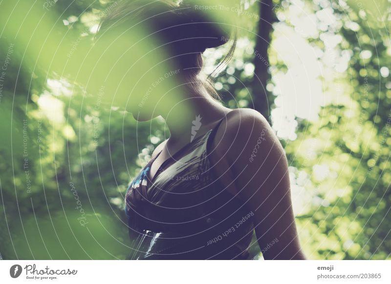 im Verborgenen Mensch Natur Jugendliche grün Pflanze Sommer Wald Erholung feminin Frühling Garten Park Erwachsene Umwelt beobachten anonym