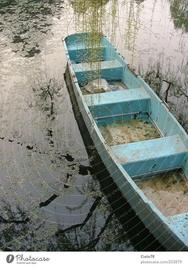 Boot auf See Natur Wasser alt Baum blau ruhig Einsamkeit Romantik Asien Idylle Gelassenheit China Teich Weide