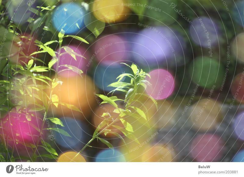 Kinderkette blau Sommer gelb Garten rosa Design Lifestyle Ball Lebensfreude Lichtspiel mehrfarbig Farbenspiel