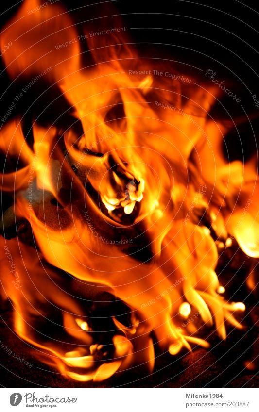 Inferno rot Sommer gelb Wärme hell Brand Feuer wild heiß brennen Urelemente Flamme Desaster Kohle Glut
