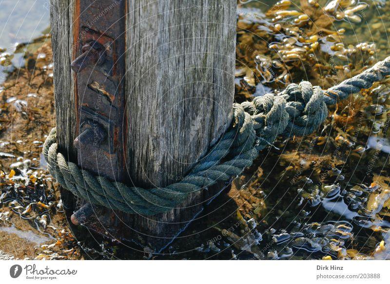 Der rettende Pfahl Meer Natur Küste Bucht Fjord Nordsee Ostsee Hafenstadt Menschenleer Schifffahrt Bootsfahrt Seil Holz Metall Wasser fest braun Kontrolle