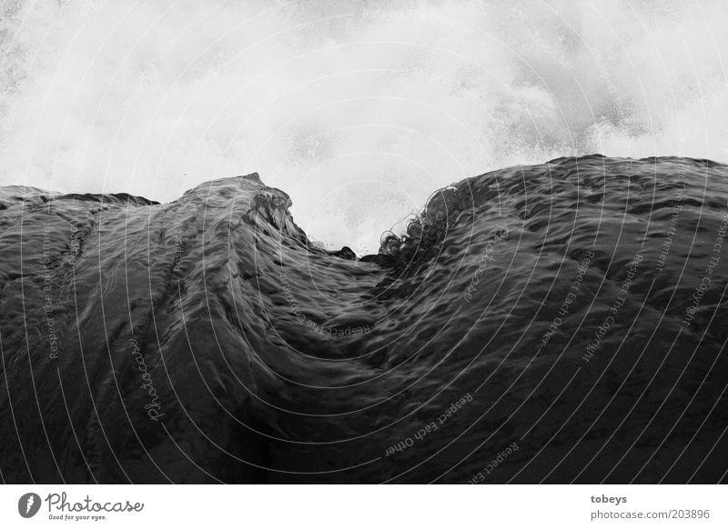 mächtig Wasser Klimawandel Wellen Meer Monsun Macht Brandung unruhig Schwarzweißfoto Außenaufnahme Schatten Kontrast wellig Wellengang Wellenform Wellenschlag