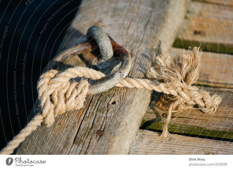 Jetzt sind wir fest! Seil Schifffahrt Hafen hängen braun Vertrauen Sicherheit Verantwortung Misstrauen Beratung Kontrolle Rettung Holz Steg Kreis befestigen
