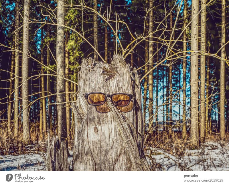 sommerfrischler Natur Ferien & Urlaub & Reisen Baum Landschaft Wald Gesicht Umwelt Lifestyle Frühling Schnee Kunst Haare & Frisuren Tourismus Körper warten