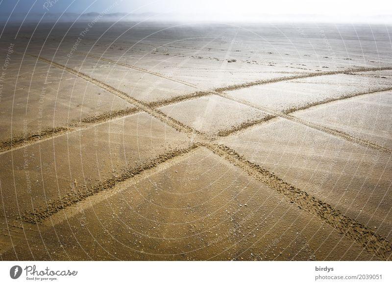 Kreuzverkehr Landschaft Sand Nebel Strand Wüste Verkehr Wege & Pfade Wegkreuzung Reifenspuren PKW Linie fahren Bewegung Einsamkeit Horizont Mobilität