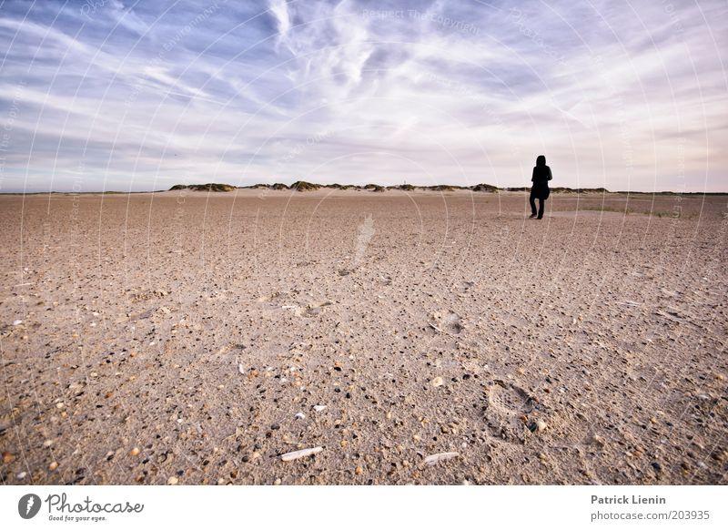 Lost! Mensch Natur Himmel Meer Sommer Strand Wolken Einsamkeit Ferne Erholung Sand Landschaft Luft Küste Wind Umwelt