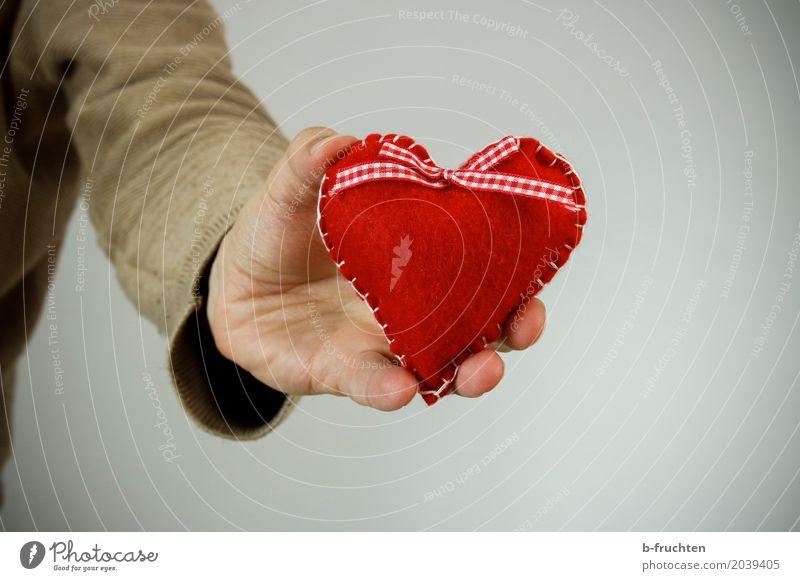 ich leihe dir meines Mann Erwachsene Partner Arme Hand 30-45 Jahre Pullover warten nah rot Sympathie Freundschaft Liebe Verliebtheit Romantik Solidarität