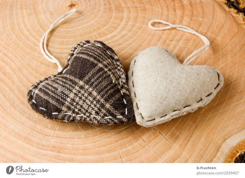 forever Baum Liebe braun Freude Sympathie Glaube Religion & Glaube Herz Verliebtheit Stoff 2 Baumstamm Jahresringe Vergänglichkeit Vergangenheit Zukunft