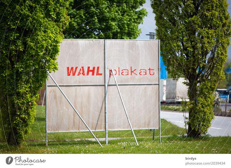 Politikverdrossenheit Politiker Politik & Staat Baum Straße Plakatwand Schriftzeichen Schilder & Markierungen authentisch einfach lustig Stadt Optimismus