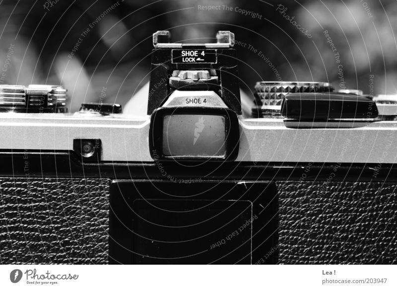 Kamera Fotografieren Fotokamera alt retro Leidenschaft Schwarzweißfoto Außenaufnahme Menschenleer Tag Zentralperspektive analog Sucher