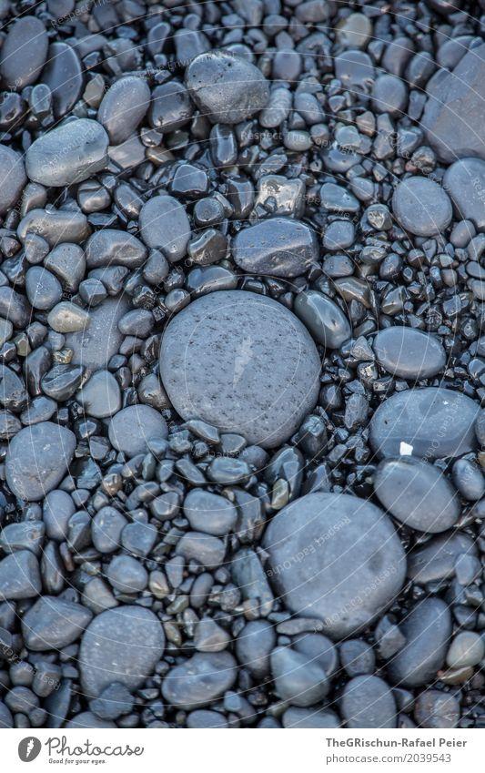 Gestein Umwelt Natur schwarz Lava Lavastrand Stein grau anthrazit Oval rund flach Island Farbfoto Außenaufnahme Detailaufnahme Menschenleer Textfreiraum links