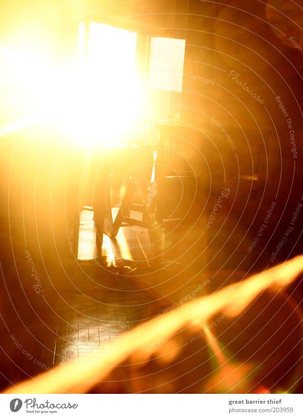 Sonnentsunami Sommer Schönes Wetter leuchten positiv gelb gold einzigartig rein Raum Perspektive blenden Farbfoto mehrfarbig Innenaufnahme Experiment