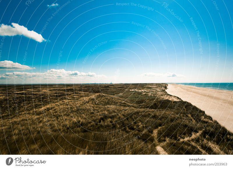 Dänische Weite Himmel grün blau Strand Wolken gelb Ferne Gras Freiheit Sand Landschaft Küste Horizont Unendlichkeit Sehnsucht außergewöhnlich