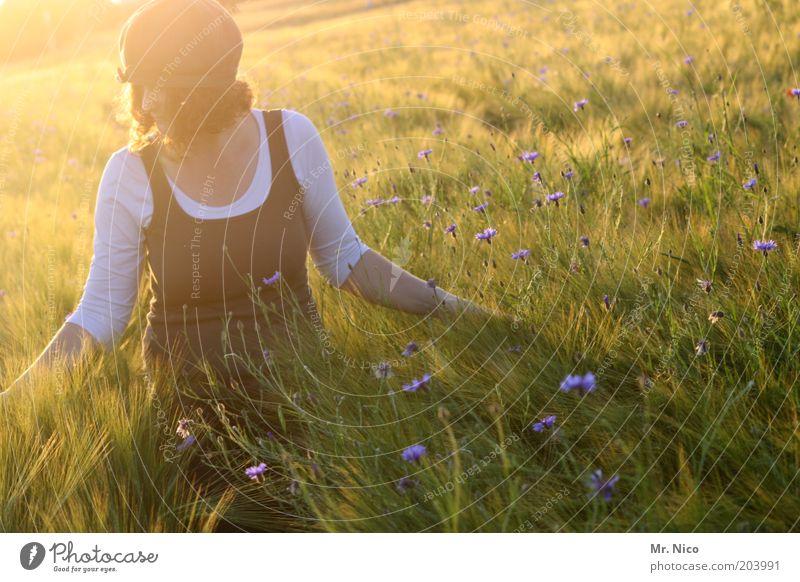Sommerabend ll feminin Frau Erwachsene Natur Landschaft Klima Wetter Pflanze Feld Mütze rothaarig Locken Glück Zufriedenheit Romantik Wärme träumen Duft