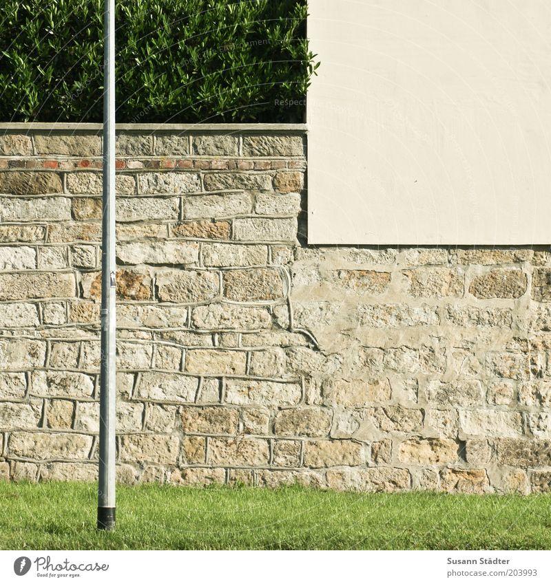 Platz für ein Stückchen Grün Wand Gras Mauer Fassade Sträucher Laterne Barriere Hecke eckig Laternenpfahl Begrenzung Sandstein Mauerstein verputzt Steinmauer