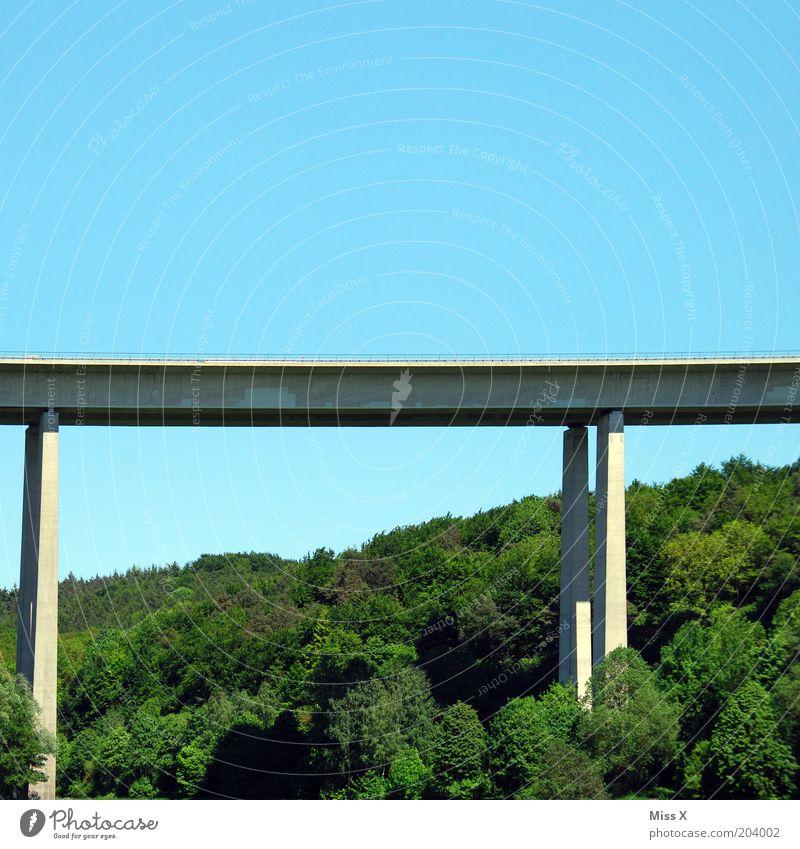 Brücke Natur Landschaft Wald Verkehr Verkehrswege Straße Umwelt Autobahn Farbfoto Außenaufnahme Textfreiraum oben Pylon Hochstraße Architektur