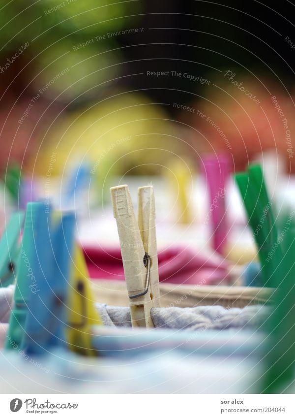 Alltags-Zyklus Sauberkeit festhalten trocken Kunststoff hängen Wäsche Wäsche waschen trocknen Klammer Reinigen Wäscheleine mehrfarbig Alltagsfotografie Wäscheklammern Haushaltsführung