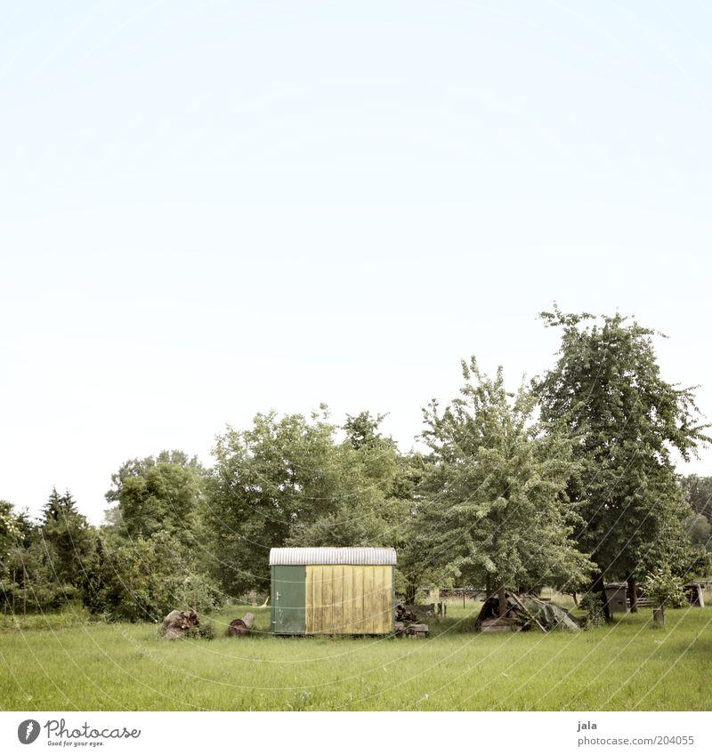 bauwagen Natur Landschaft Himmel Pflanze Baum Gras Sträucher Grünpflanze Wildpflanze Garten Wiese Bauwagen groß grün Farbfoto Außenaufnahme Menschenleer