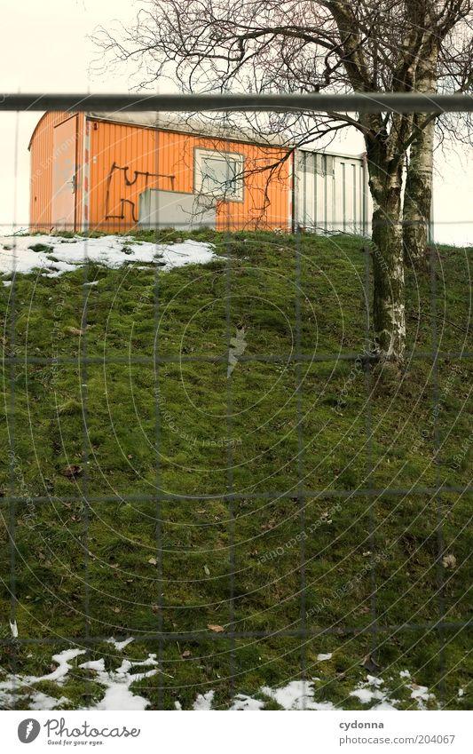 Baustop Baustelle Dienstleistungsgewerbe Umwelt Winter Schnee Baum Wiese kalt ruhig stagnierend Zeit Bauwagen Absperrgitter Farbfoto Außenaufnahme Menschenleer