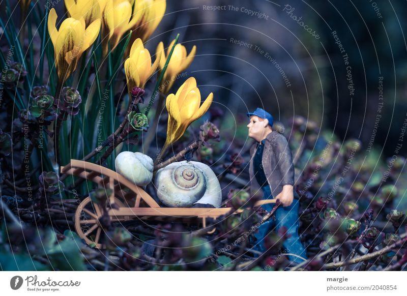 Miniwelten - Gartenarbeit Mensch Natur Mann Pflanze grün Blume Tier Erwachsene gelb Frühling Arbeit & Erwerbstätigkeit maskulin Schönes Wetter Landwirtschaft