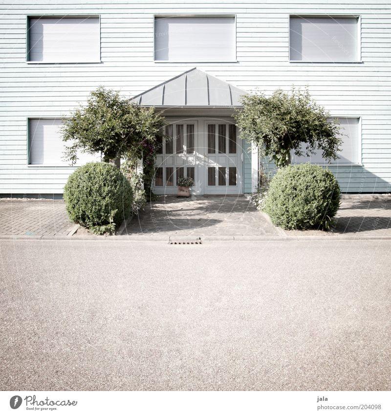 synchron begrünung Pflanze Baum Sträucher Grünpflanze Haus Gebäude Fassade Fenster Tür Straße ästhetisch Sauberkeit Farbfoto Außenaufnahme Menschenleer